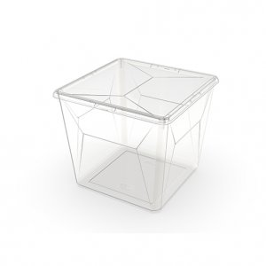 17.1L Karton Large Square_CLEAR copy
