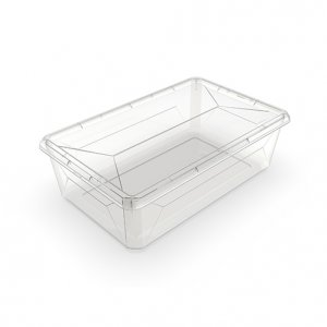 6.5L Karton Shoebox_CLEAR_NEW copy