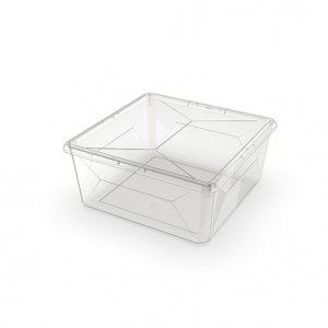9.2L Karton Medium Square_CLEAR copy